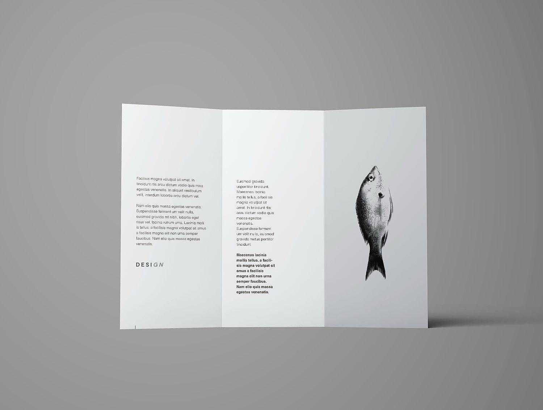 Trifold Brochure Mockup Free