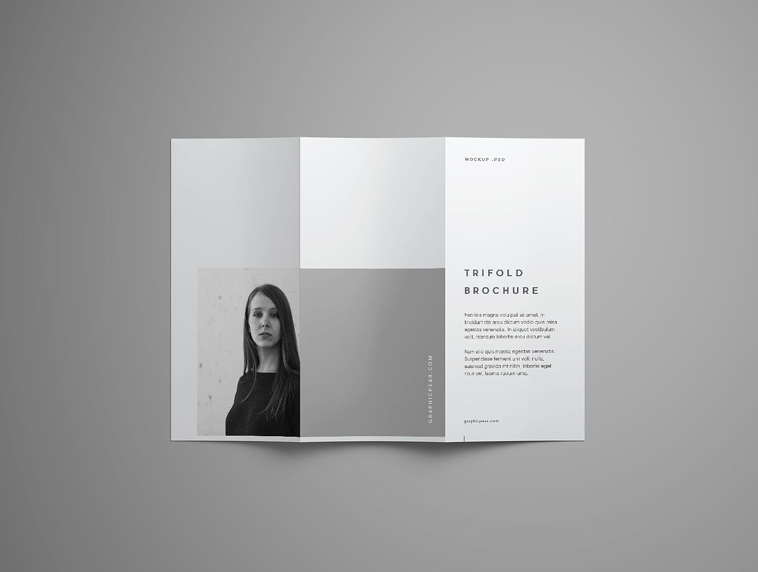 Trifold Brochure Mockup Free