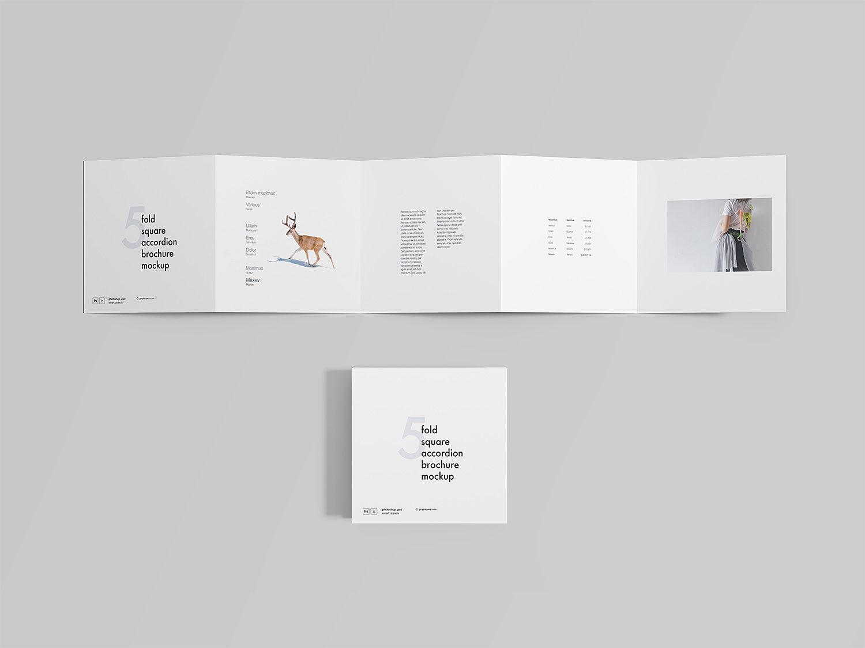 Square 5 Fold Accordion Brochure Mockup