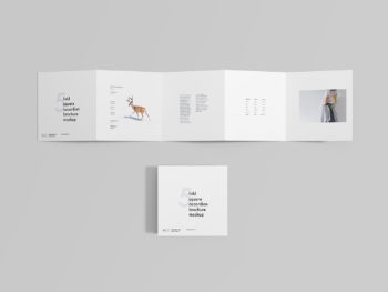 Square 5 Fold Accordion Brochure Mockup