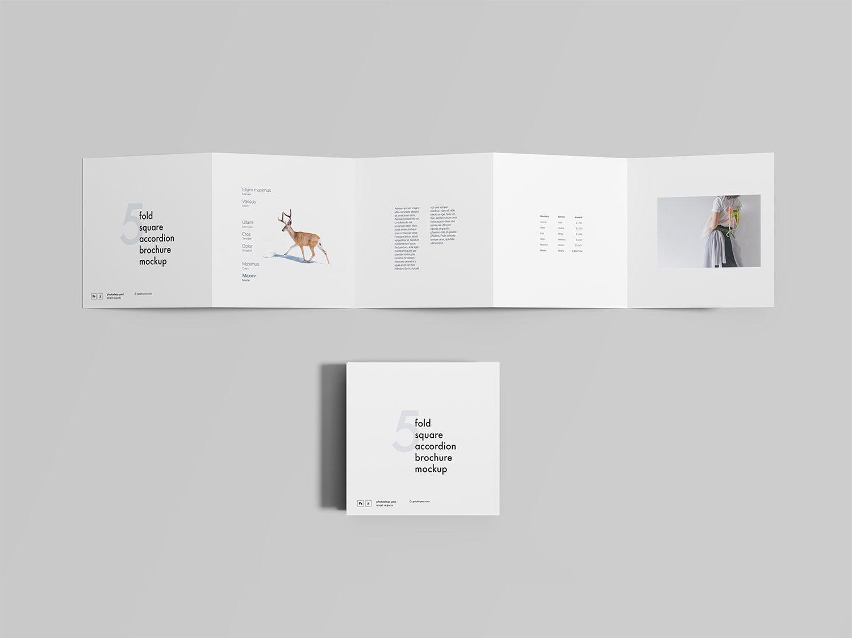 Five-Fold Square Accordion Brochure Mockup
