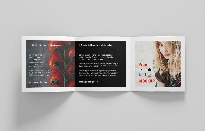 Free Square Trifold Leaflet Mockup