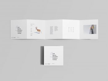 Five-Fold Square Accordion Brochure Mockup