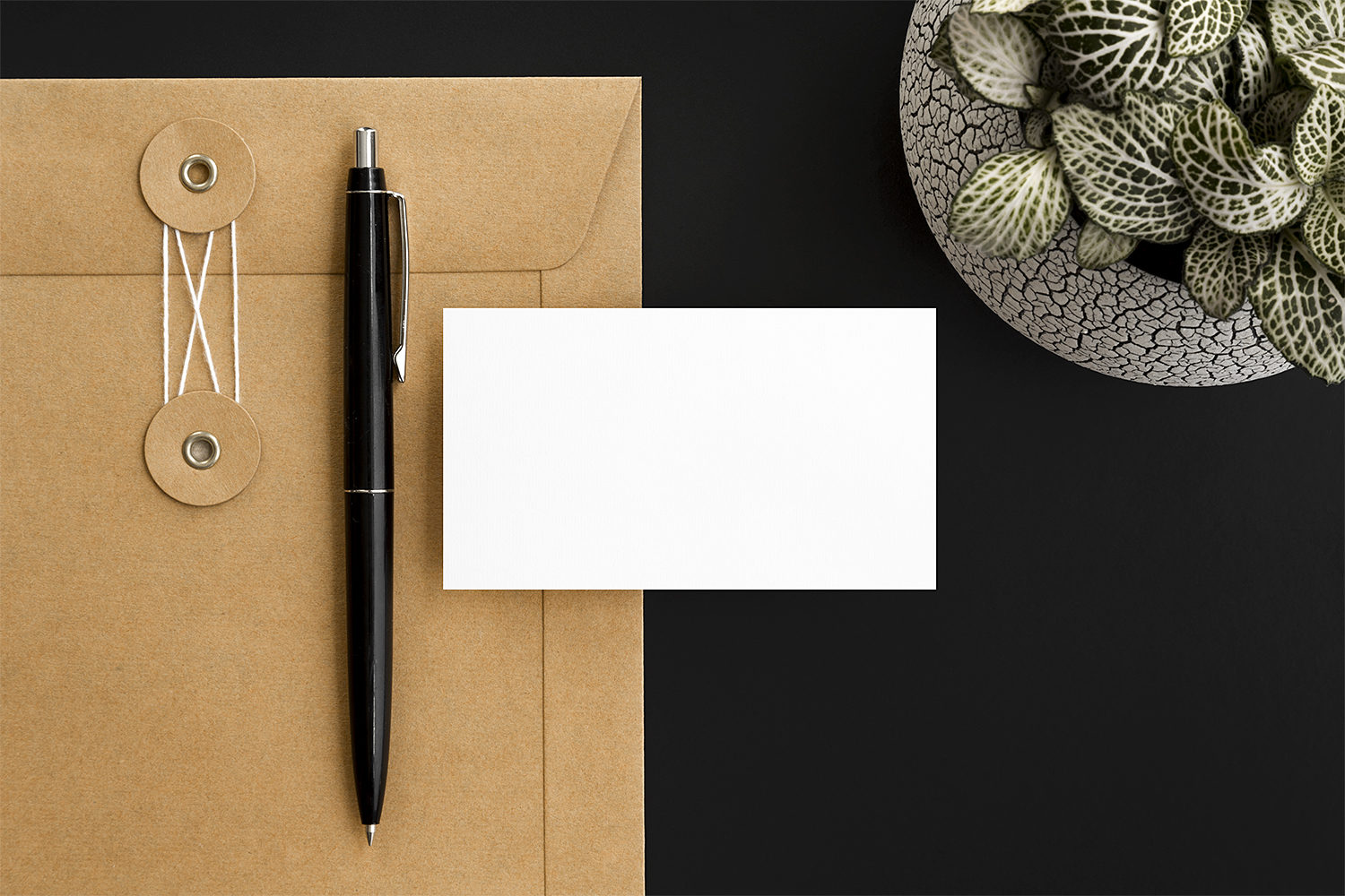 Free Minimalist Business Card Mockups