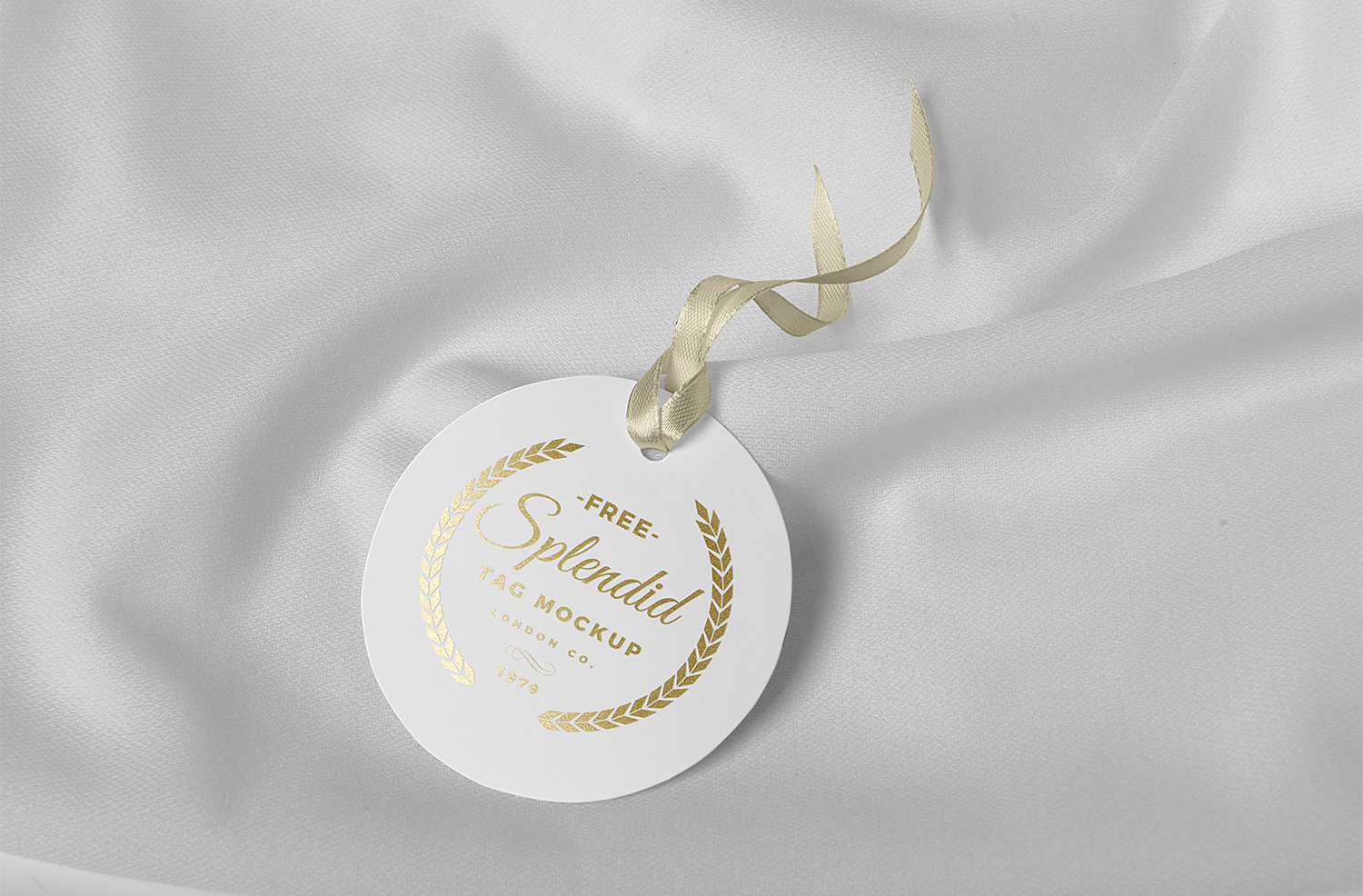 Free Lavish Tag Mock Up