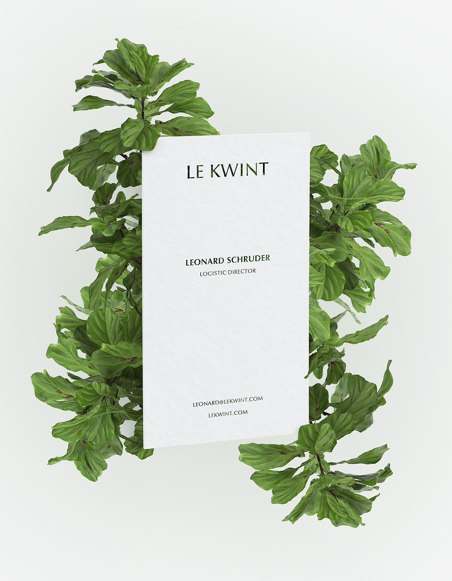 Free Floral Business Card Branding Mockup