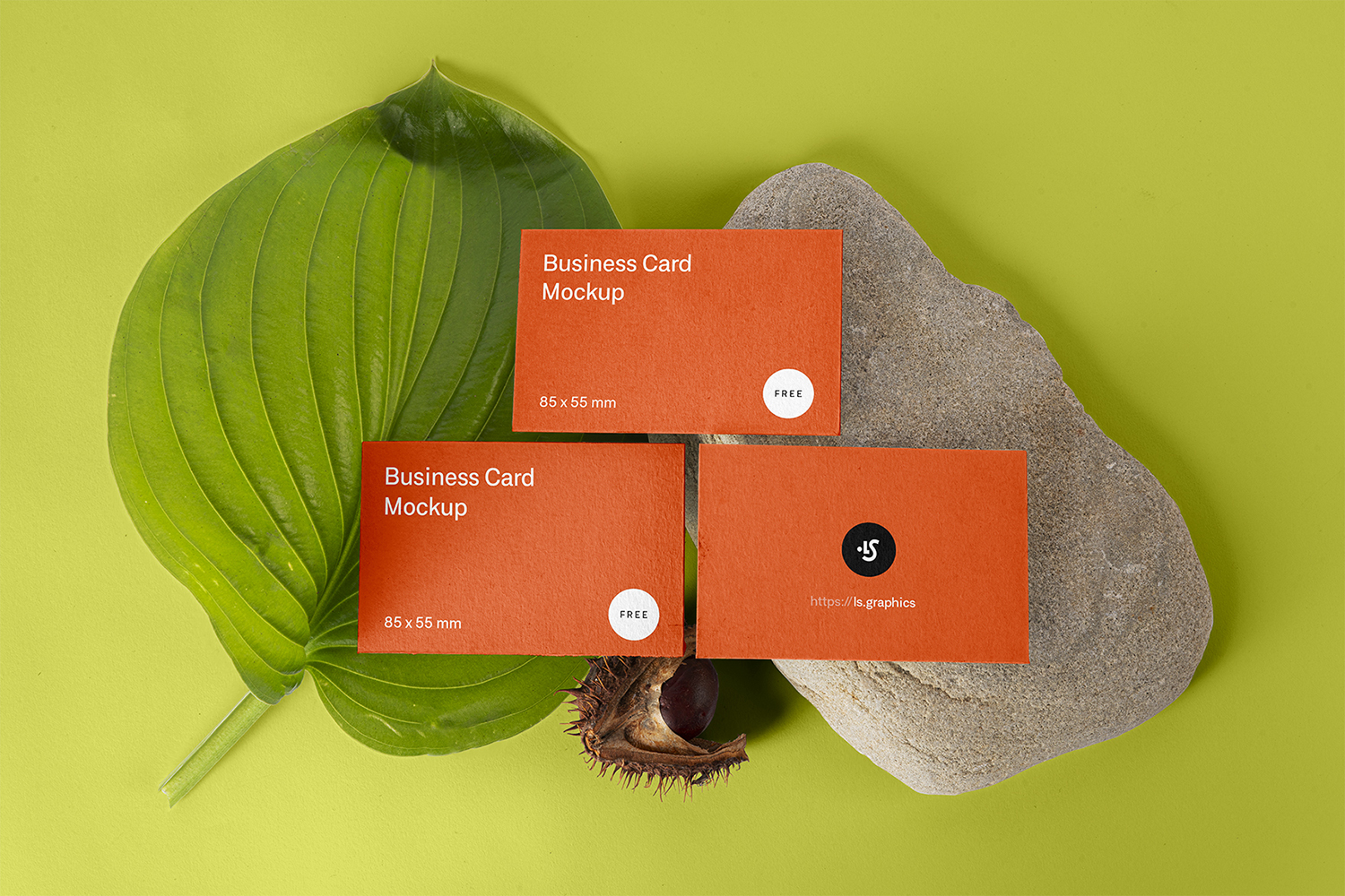 Floral Three Business Cards Free Mockup