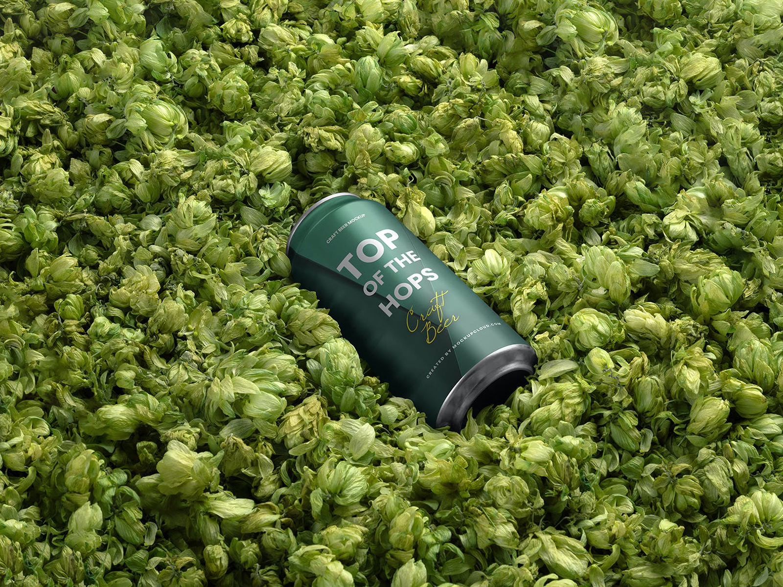 Beer Can Free Mockup Surrounded Hops Flowers