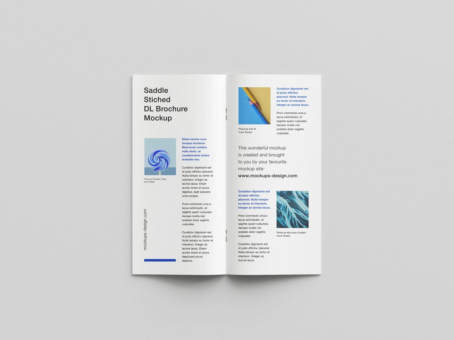 Saddle-Stitched DL Brochure Free Mockup